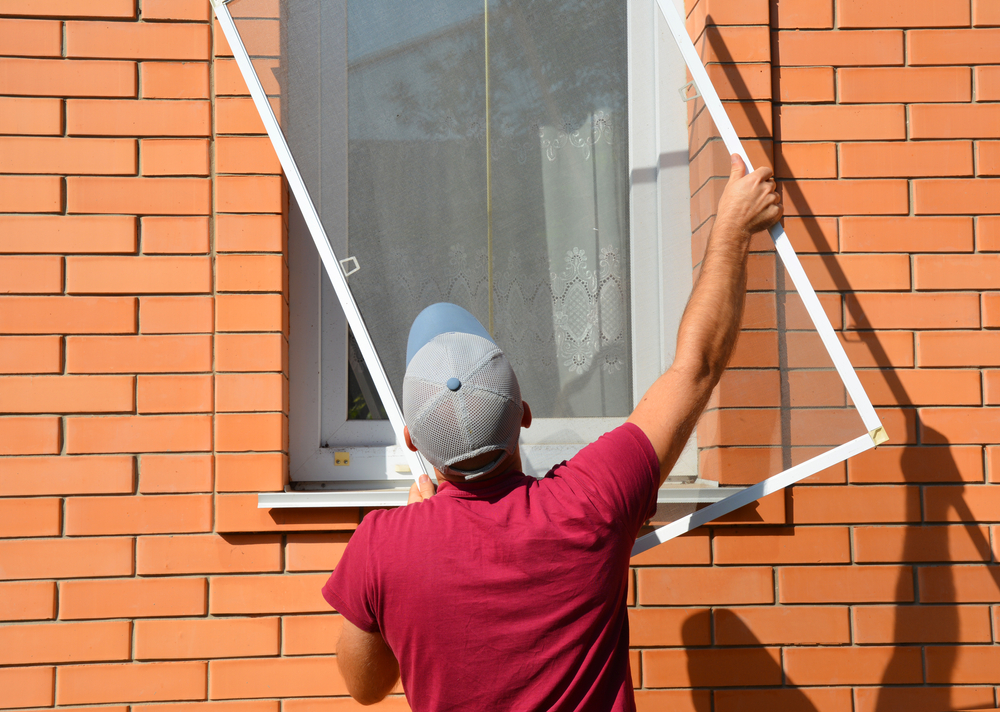 How much does it cost to replace a fly screen?